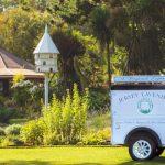 Jersey Lavender Farm Tours